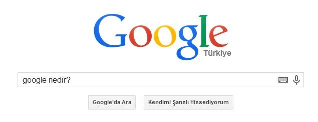 google nedir