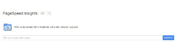 google pagespeed sayfası